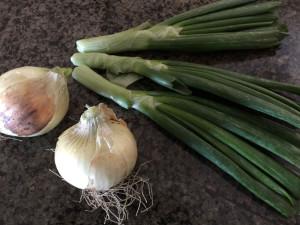 Texas Sweet Onions