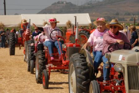 Antique Tractor Underwood Farms