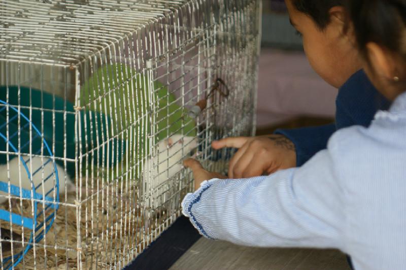 Animal Center Underwood Farms